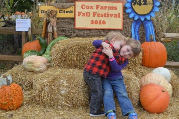 15 Easy & Fun Fall Activities for Kids and Families