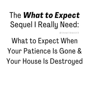 funny stay at home mom meme about What to Expect