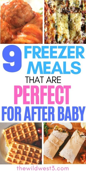 9 Freezer Meals that are Perfect for After Baby Pin Image
