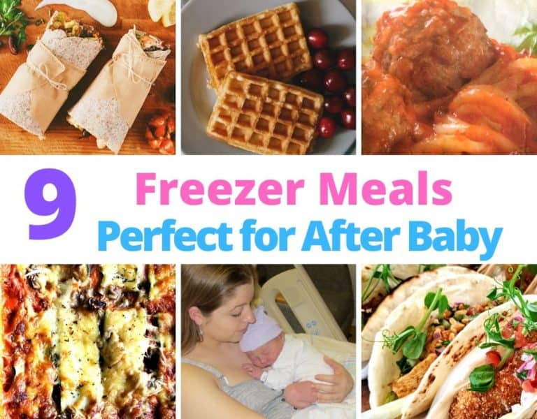 Freezing Meals Before Baby: 9 Perfect Freezer Meals to Have on Hand After Baby's Arrival