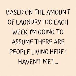 funny I hate laundry meme